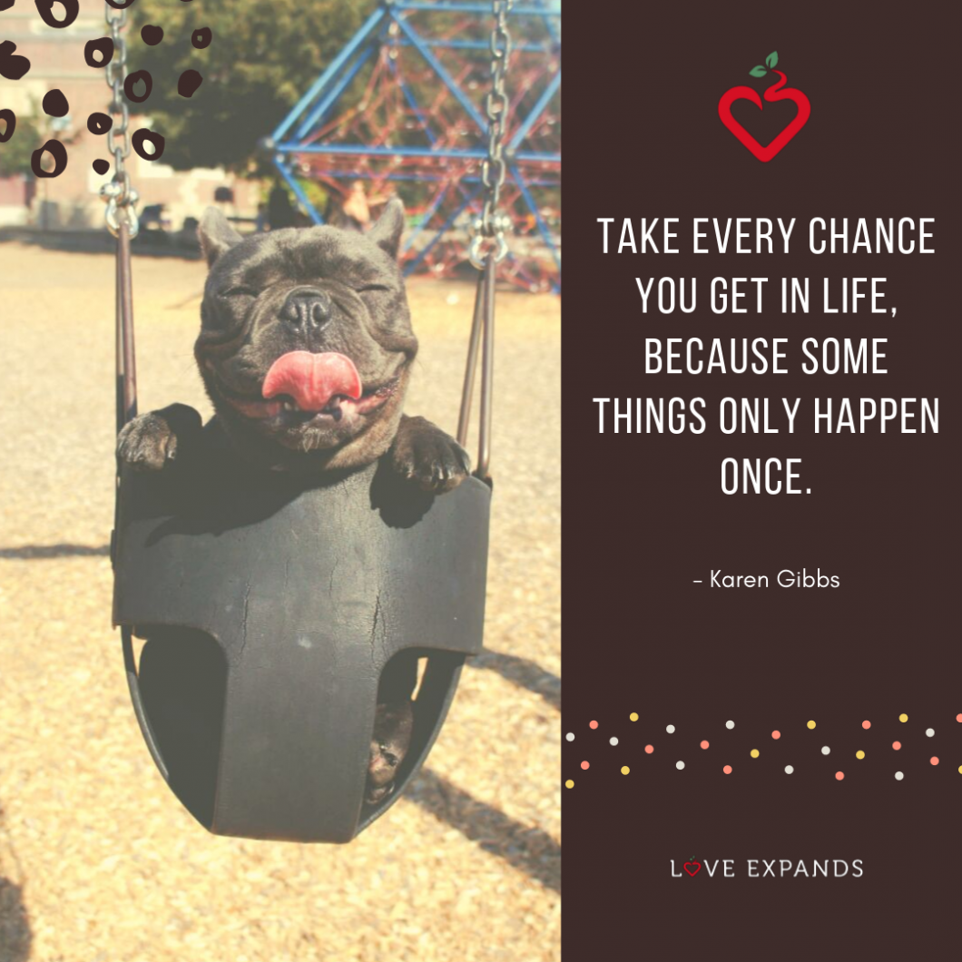 """Picture quote with a black Boston Terrier sticking out its tongue on a swing. Quote says, """"Take every chance you get in life, because some things only happen once."""""""