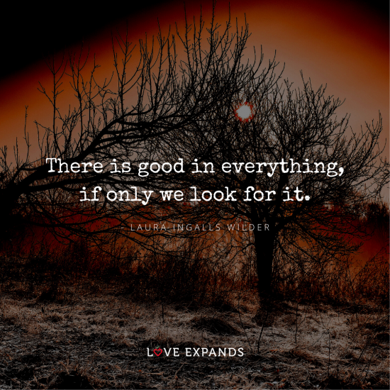 Picture quote of dead tree and sun by Laura Ingalls Wilder